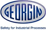 Georgin logo